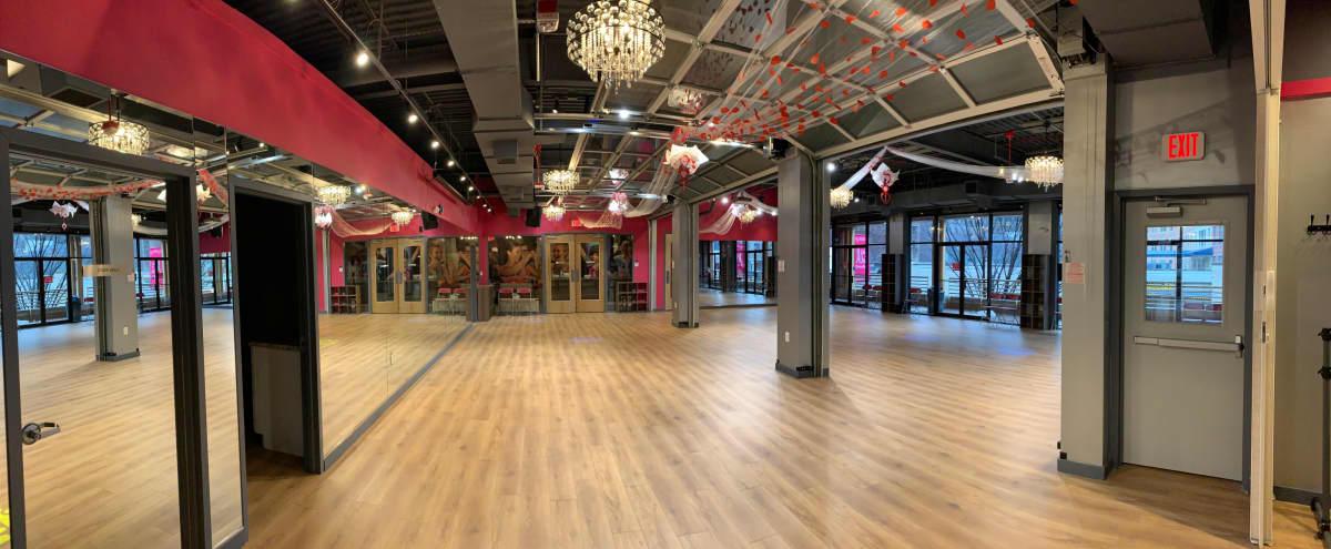 Gorgeous - Open Layout Studio in Bethesda in Bethesda Hero Image in undefined, Bethesda, MD