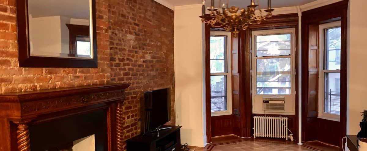 Massive 4 bedroom 2 bath Holiday Celebration Rental in Brooklyn Hero Image in Park Slope, Brooklyn, NY