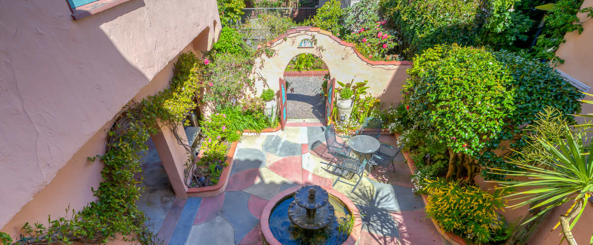 Dreamy, Marina Rose Garden in San Francisco Hero Image in Marina District, San Francisco, CA