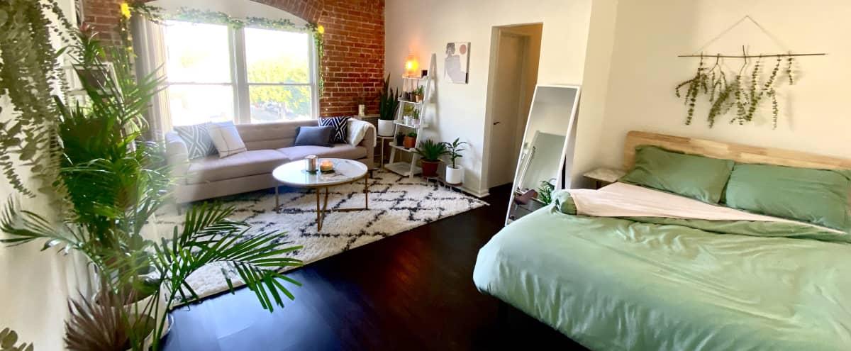Feminine Chic Brick Studio Apartment With Light and Views in Los Angeles Hero Image in Los Feliz, Los Angeles, CA