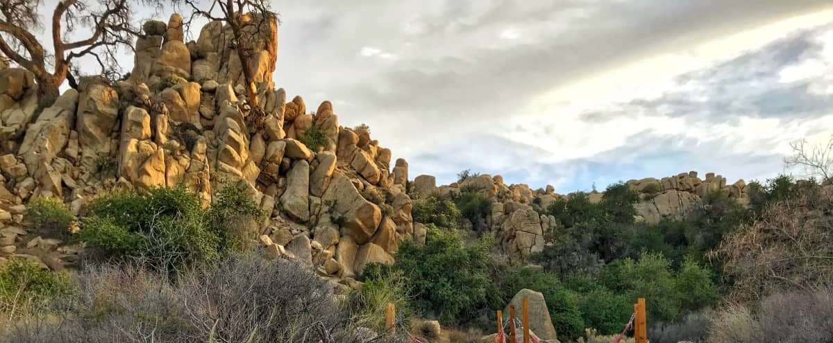 Boulder Grove Ranch - 8 Acres of Stunning Boulders & Joshua Trees, Home & Barn in Yucca Valley Hero Image in , Yucca Valley, CA