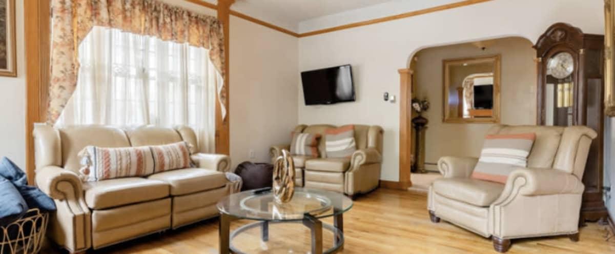 Spacious Sweet Home in Long Island City Hero Image in Long Island City, Long Island City, NY