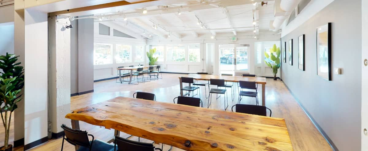 Bright and Airy space near Stanford Campus in Palo Alto Hero Image in undefined, Palo Alto, CA