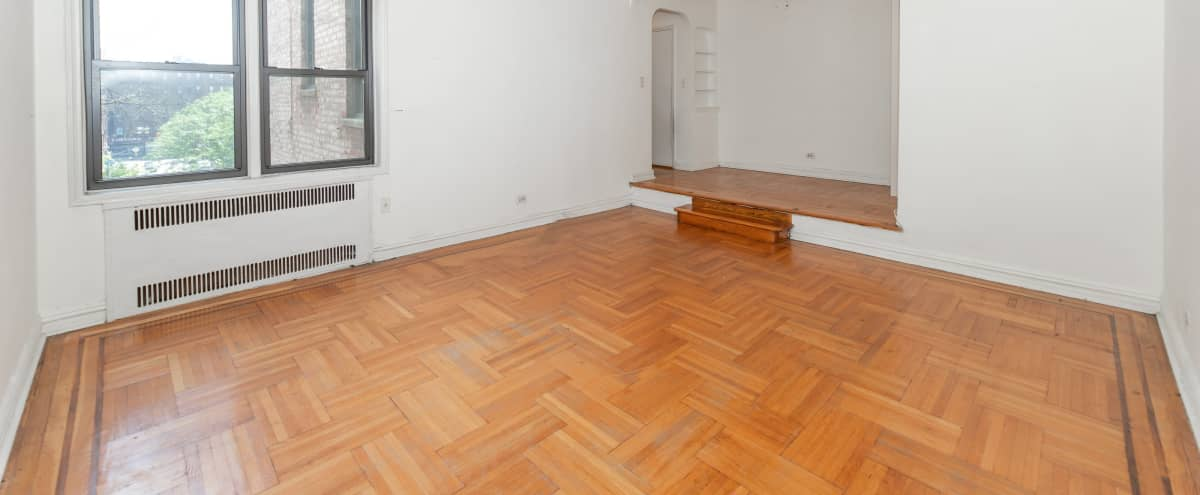 Marvelous Blank Slate Apartment in Brooklyn Hero Image in Prospect Lefferts Gardens, Brooklyn, NY