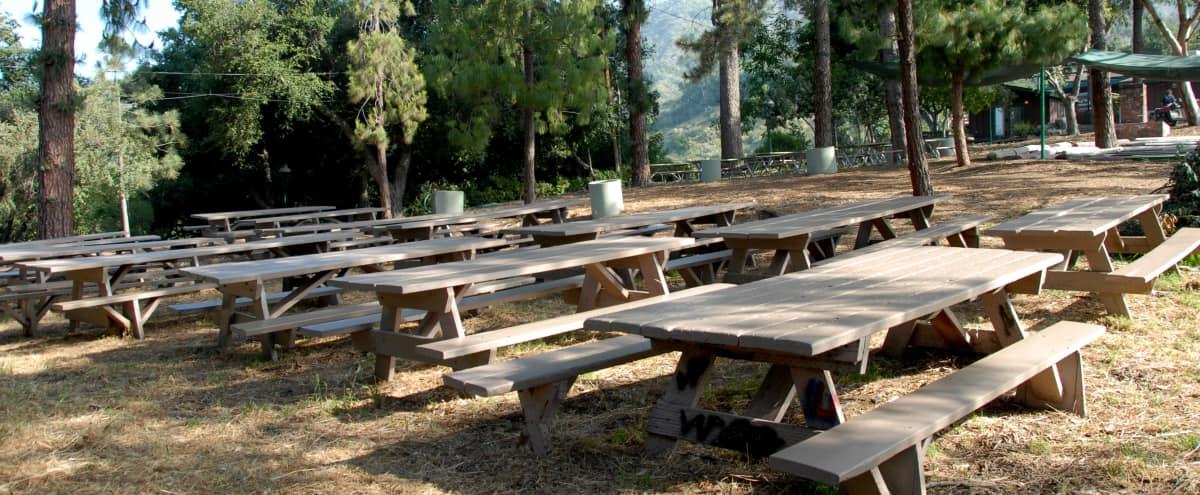 Parklike Private Camp with Indoor & Outdoor Spaces in Altadena Hero Image in undefined, Altadena, CA
