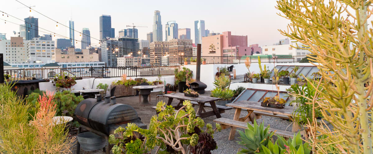 Downtown LA Rooftop Garden Oasis in the Sky w/skyline and 360 views in Los Angeles Hero Image in Downtown, Los Angeles, CA