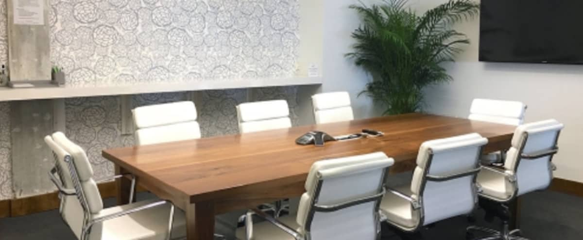 Stylish Coconut Grove Meeting & Conference Room For 8 in Coconut Grove Hero Image in Northeast Coconut Grove, Coconut Grove, FL