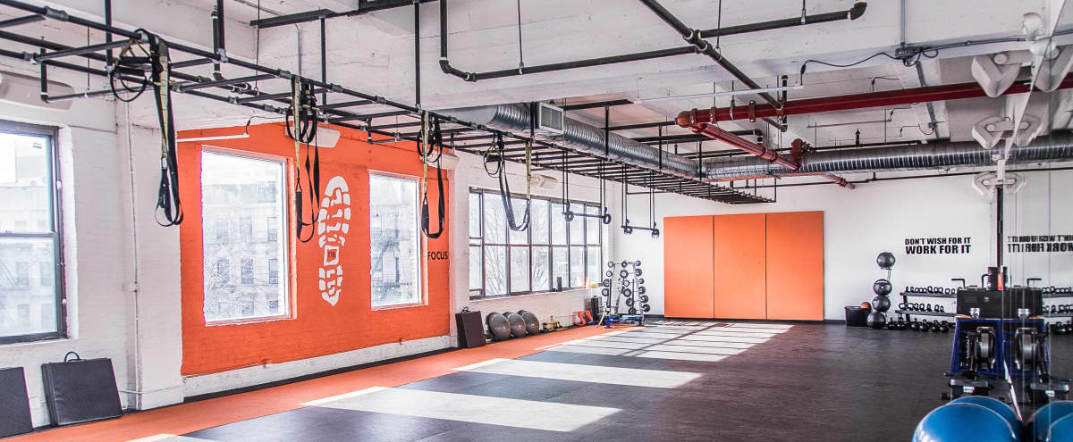 Spacious Brooklyn Studio Gym in Brooklyn Hero Image in Prospect Lefferts Gardens, Brooklyn, NY