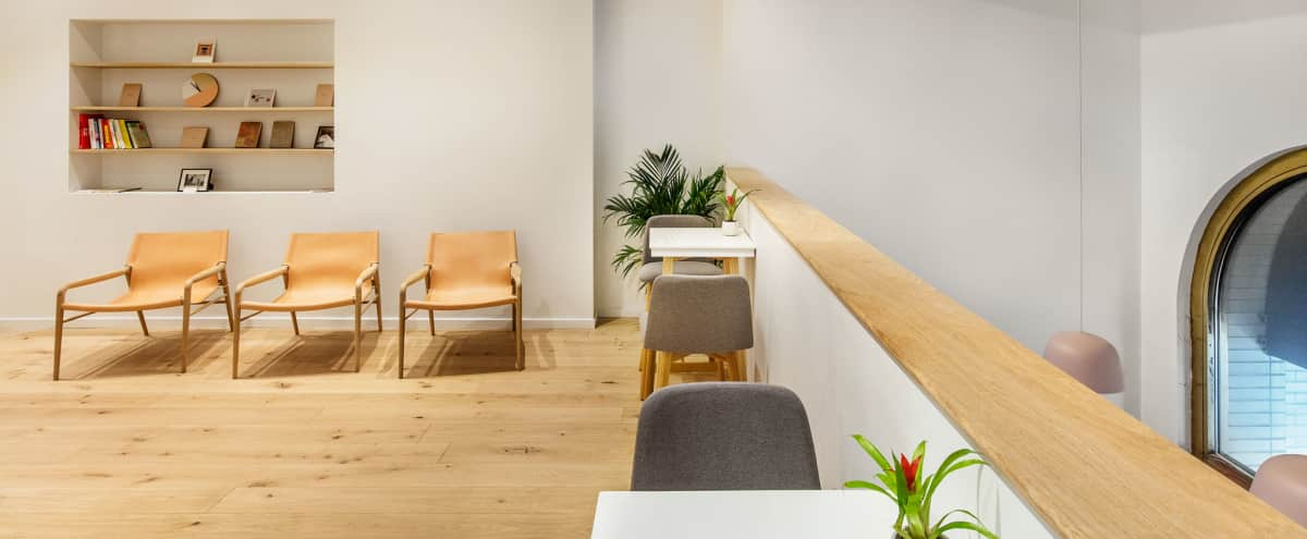 Serene and Versatile Minimalist Space in Flatiron/NoMad in NY Hero Image in Flatiron District, NY, NY