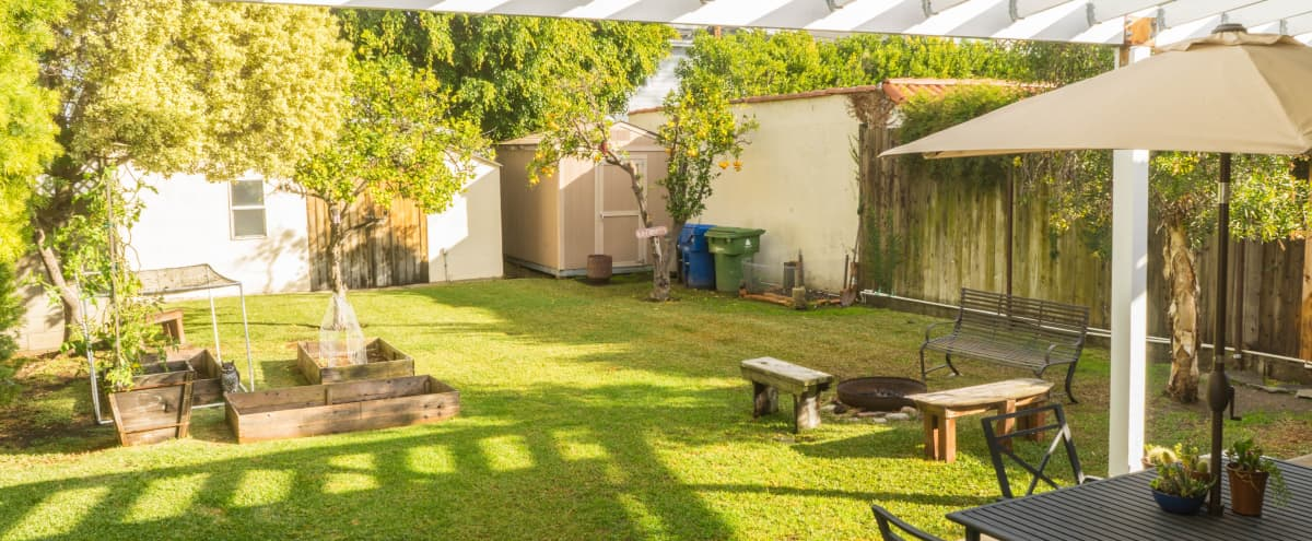 Beautiful Outdoor Backyard Event Space for Baby Showers, Birthday Parties, Weddings, Movie Screenings, Meet-ups, Work Gatherings, Dinner Parties, Workout + Yoga Classes & More. Great for dogs! in LOS ANGELES Hero Image in Melrose, LOS ANGELES, CA