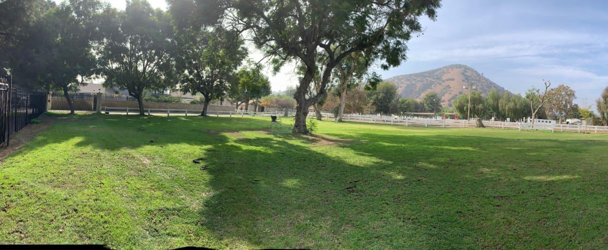 Premier Equestrian Facility - Heart of Los Angeles in Los Angeles Hero Image in Atwater Village, Los Angeles, CA