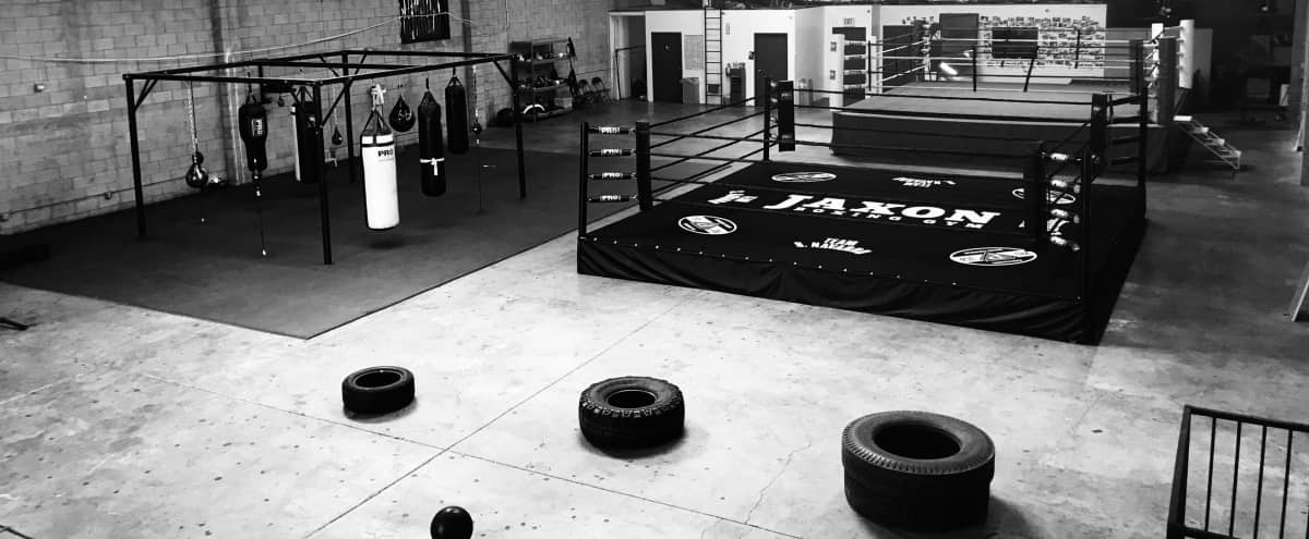 Boxing Gym - Fitness and Weightlifting area in a Warehouse + Physical Therapy room in Los Angeles Hero Image in South Los Angeles, Los Angeles, CA