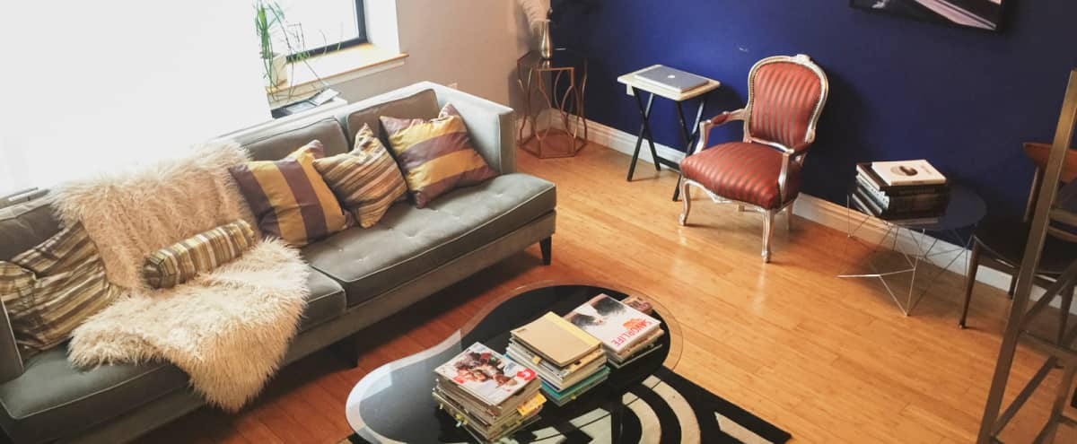 Elegant Ft Greene Apt with Great Lighting for Lifestyle Shoots in Brooklyn Hero Image in Fort Greene, Brooklyn, NY