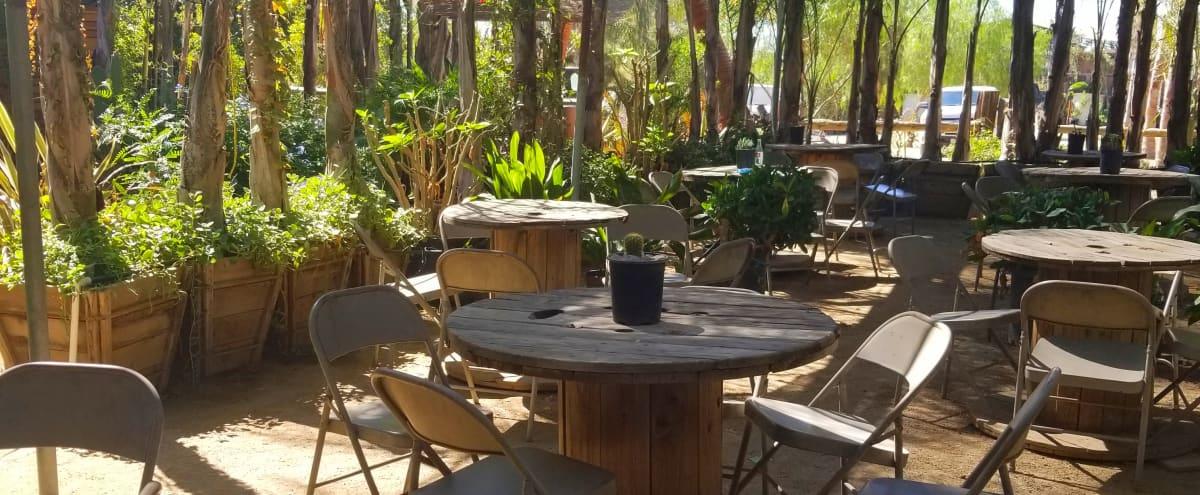 Ranch Patio Restaurant & Nursery Palms, Sylmar, Casa Hidaway in Sylmar Hero Image in undefined, Sylmar, CA
