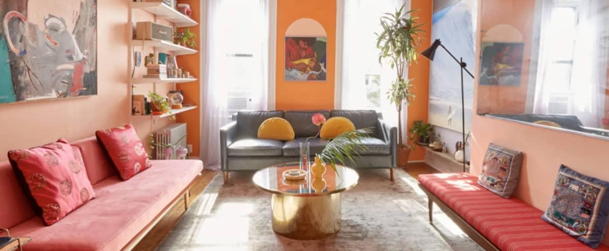 Colorful, Artistic, Soul, Groovy, Eclectic Bushwick Railroad Apartment in Brooklyn Hero Image in Bushwick, Brooklyn, NY