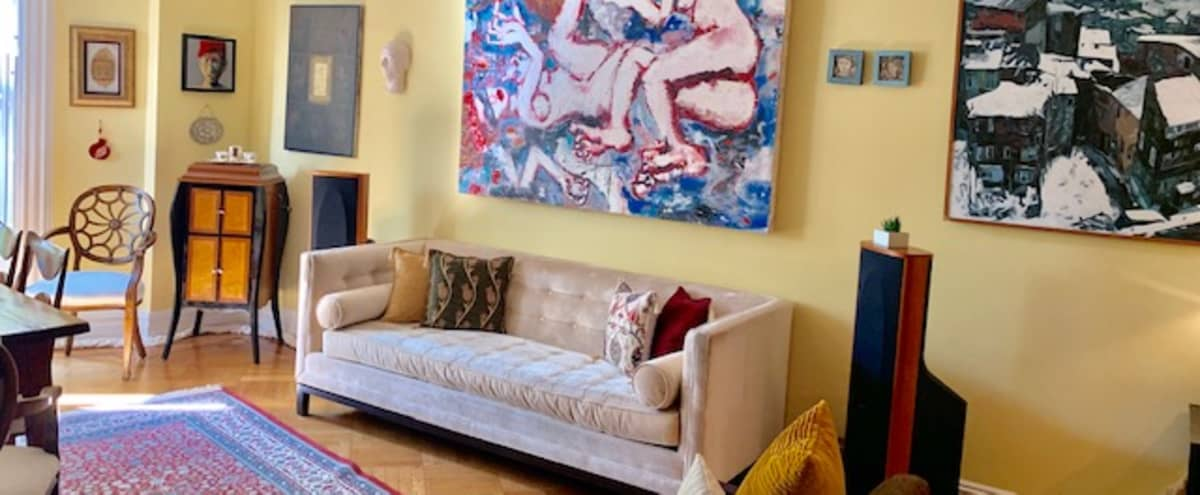 Glorious Brownstone Parlor Floor with Park View in New York Hero Image in Fort Greene, New York, NY
