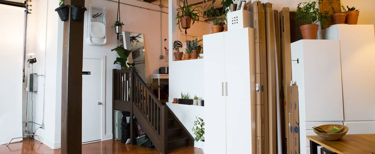 Spacious Plant-Filled Daylight Studio in Brooklyn Hero Image in Bedford-Stuyvesant, Brooklyn, NY