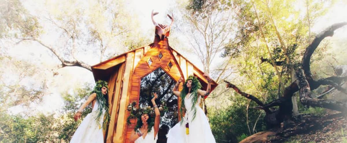 Deer Cabin Surrounded by Nature in topanga Hero Image in undefined, topanga, CA