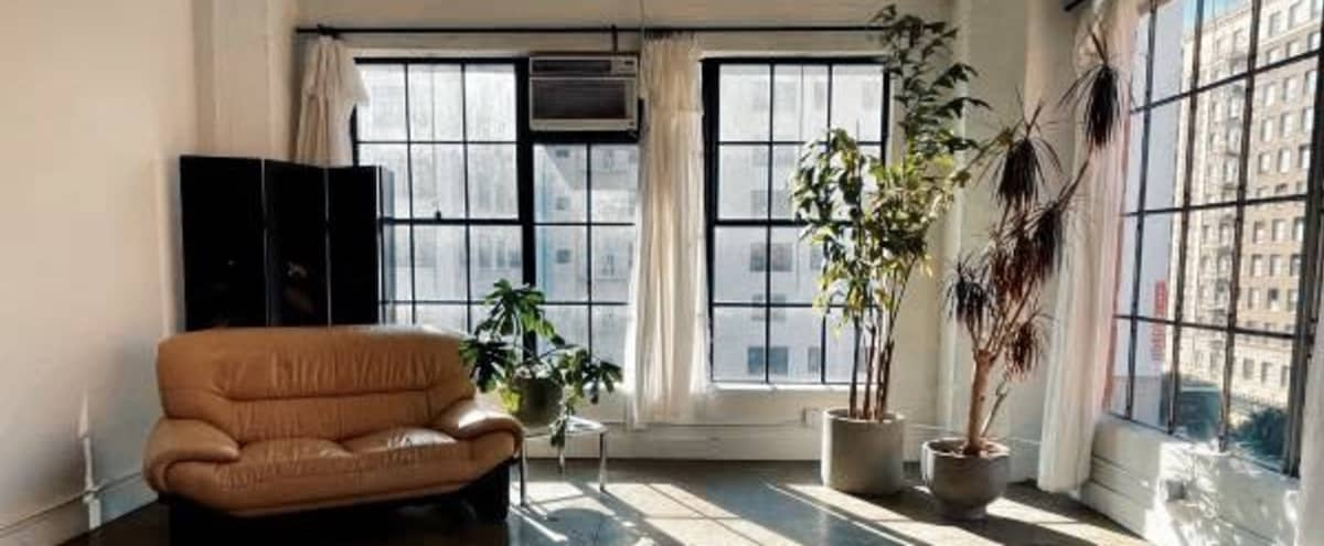 Downtown Corner Loft with Amazing Natural Light in Los angeles Hero Image in Central LA, Los angeles, CA