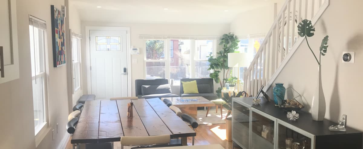 Sunny Quite Private House in Brooklyn Hero Image in East Flatbush, Brooklyn, NY