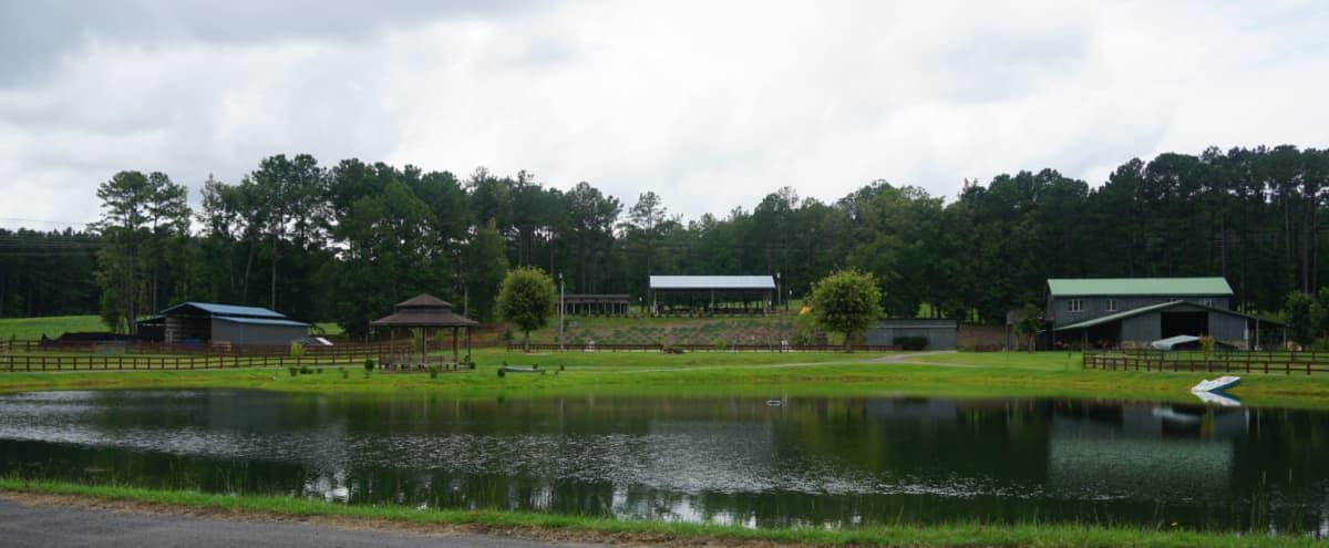 Rolling Hills Horse Ranch in Atlanta Hero Image in Cliftondale, Atlanta, GA