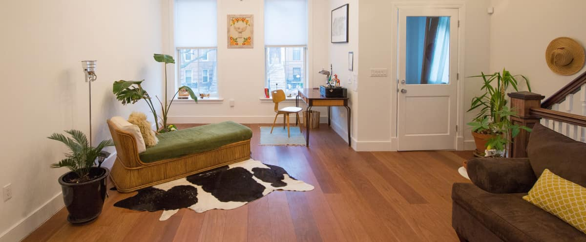 Bright Open Renovated Brooklyn Brownstone with Garden in Brooklyn Hero Image in Bedford-Stuyvesant, Brooklyn, NY