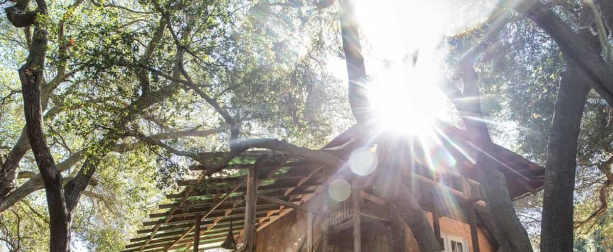 Traditional Japanese Kabuki Tea House under oaks in Topanga! in Topanga Hero Image in undefined, Topanga, CA