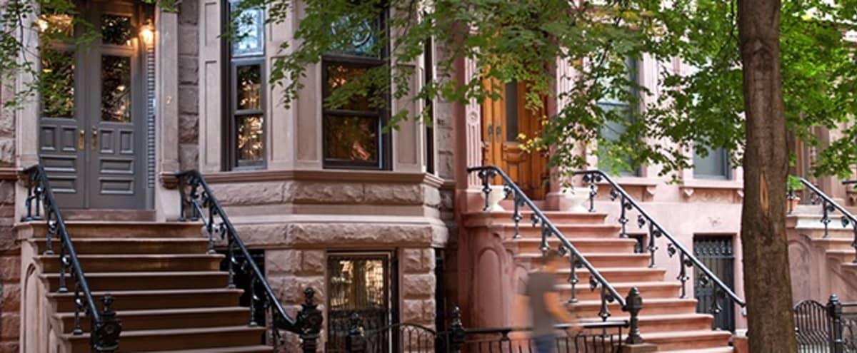 Stunning Brooklyn Brownstone in Brooklyn Hero Image in Bedford-Stuyvesant, Brooklyn, NY