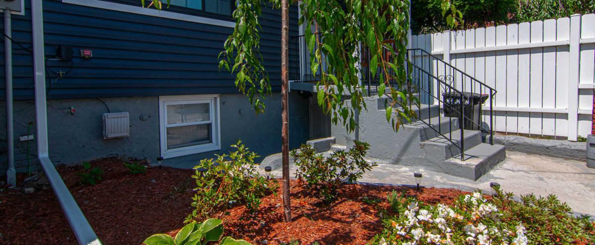 Cozy 4-story Home w/ Backyard in Jersey City Hero Image in Bergen-Lafayette, Jersey City, NJ