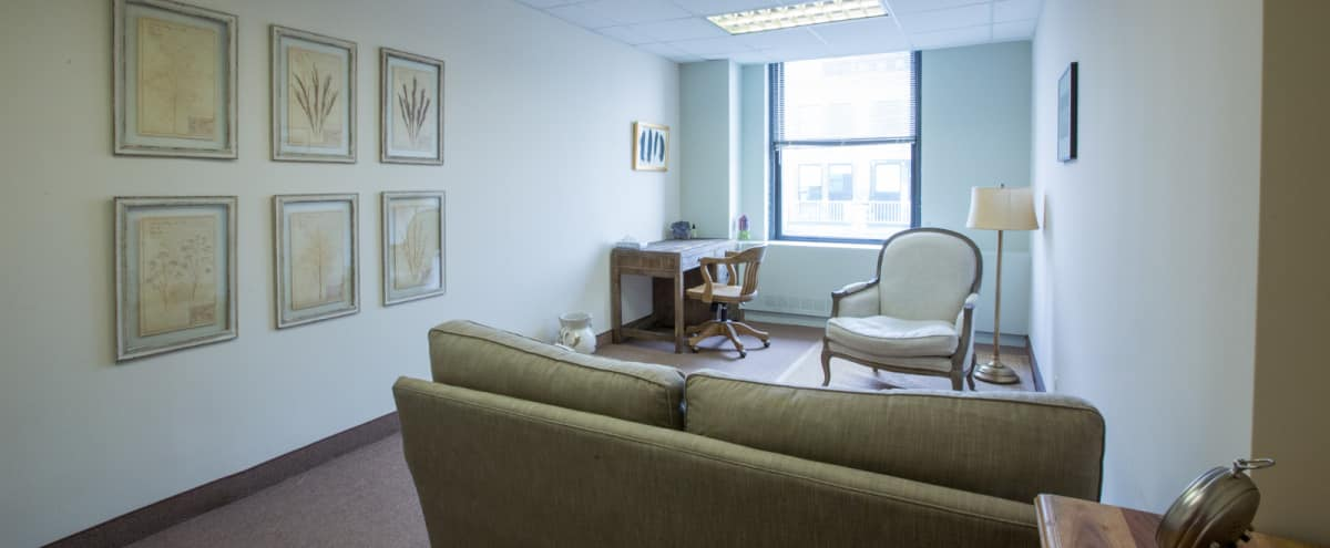 Brooklyn Heights Beautiful Elegant Office Space in Brooklyn Hero Image in Brooklyn Heights, Brooklyn, NY