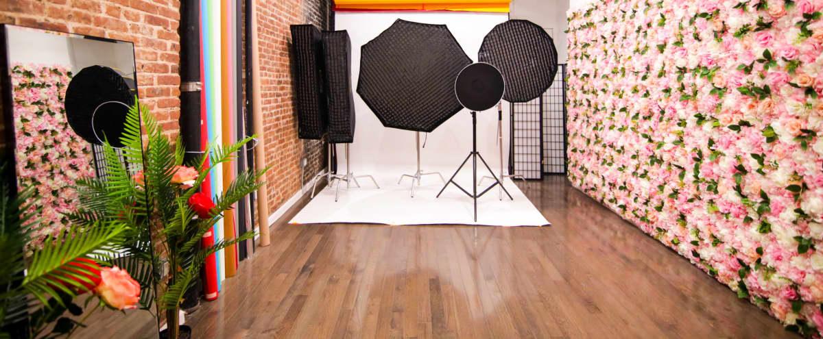 Light Studio - Cosy studio with a beautiful flower wall and free lighting equipment in Brooklyn Hero Image in Bushwick, Brooklyn, NY