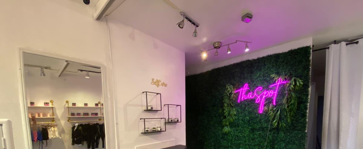 Urban Studio with Spacious and Bright Interior. in Oakland Hero Image in Temescal, Oakland, CA