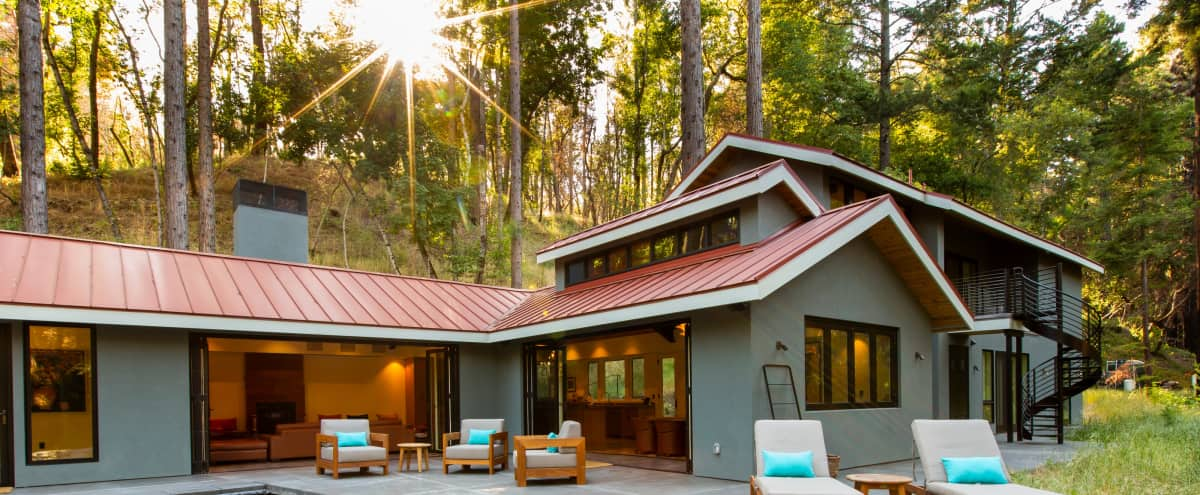 Modern Napa Estate In Redwood Forest in Napa Hero Image in undefined, Napa, CA