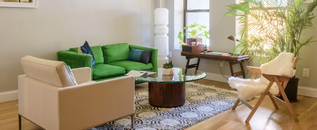 Stylish, bright brownstone garden apartment in historic Brooklyn (BedStuy) in Brooklyn Hero Image in Ocean Hill, Brooklyn, NY