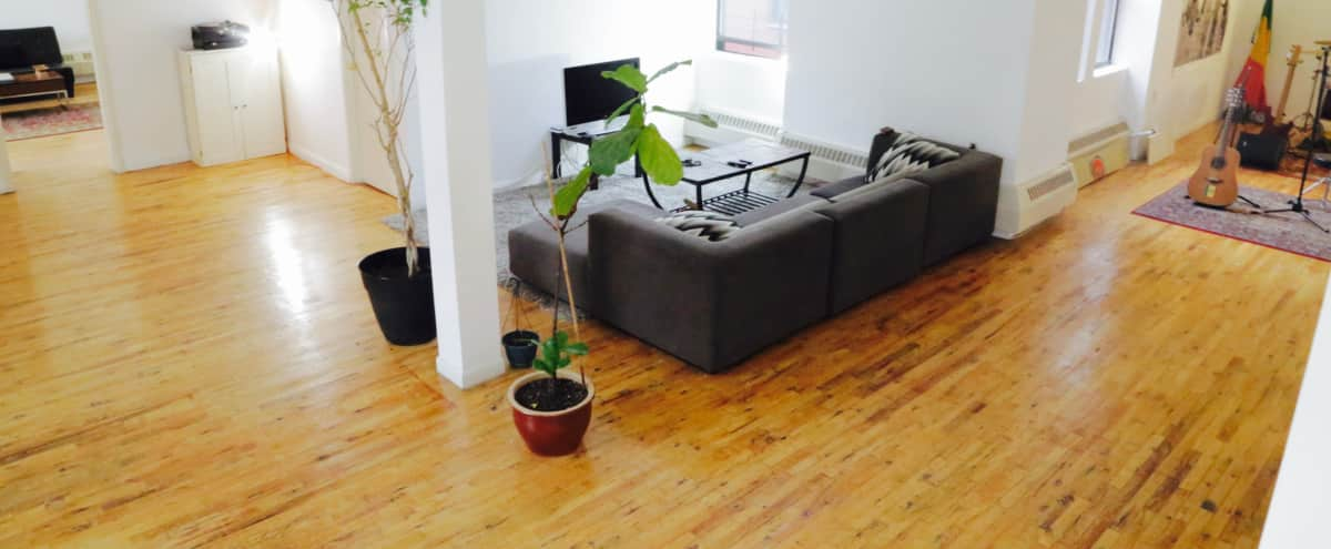 Musician's Loft with loads of natural light in New York Hero Image in Bedford-Stuyvesant, New York, NY