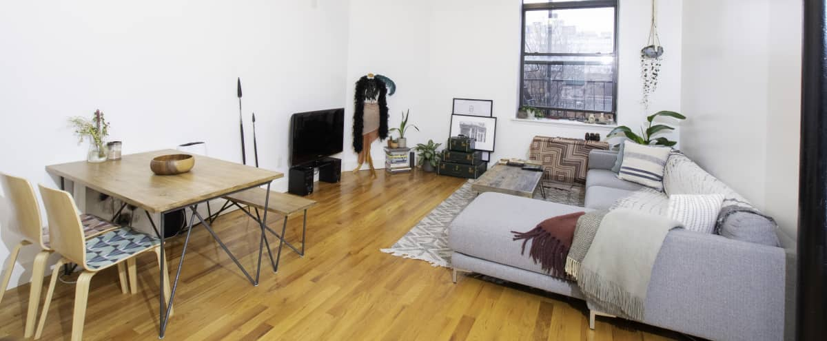 Spacious Loft, Amazing Williamsburg Location in Williamsburg Hero Image in Williamsburg, Williamsburg, NY