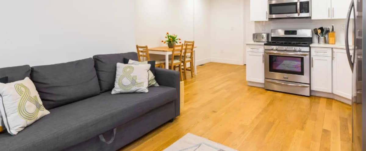 Spacious, light filled apartment in Brooklyn Hero Image in Bedford-Stuyvesant, Brooklyn, NY