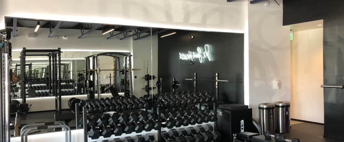 Modern silverlake fitness studio with equipment two rooms los