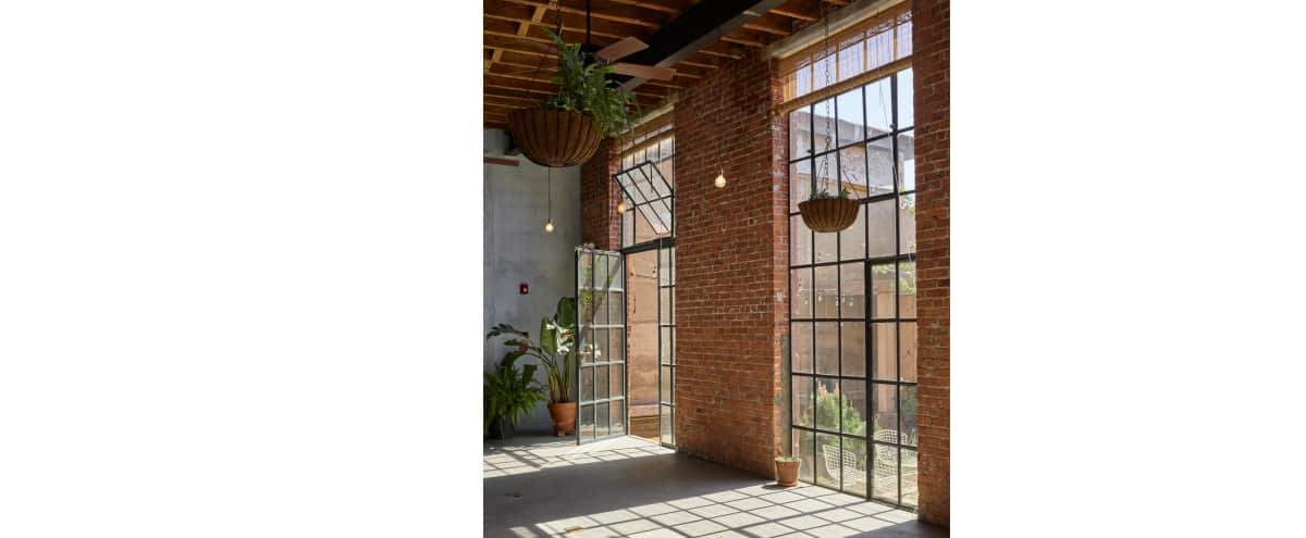 Gorgeous Light-Filled Converted Warehouse and Private Garden in Brooklyn Hero Image in East Williamsburg, Brooklyn, NY