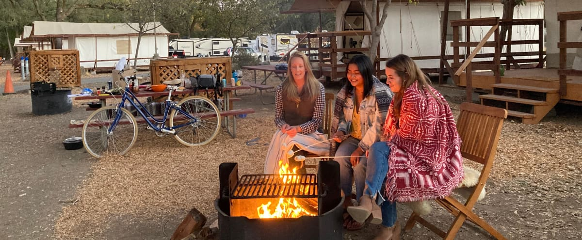 Wildhaven Glamping Resort on the Russian River in HEALDSBURG Hero Image in undefined, HEALDSBURG, CA