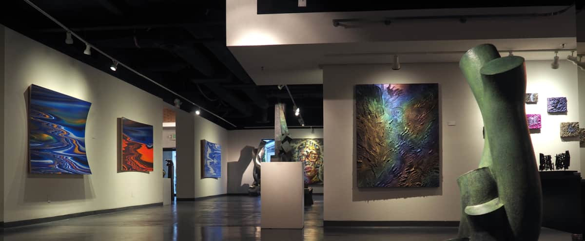 Contemporary Art Gallery With Ample Space Indooroutdoor Palm
