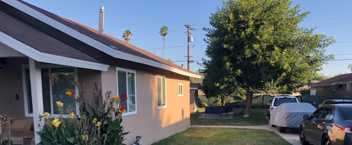 Spacious Backyard in San Gabriel Hero Image in undefined, San Gabriel, CA