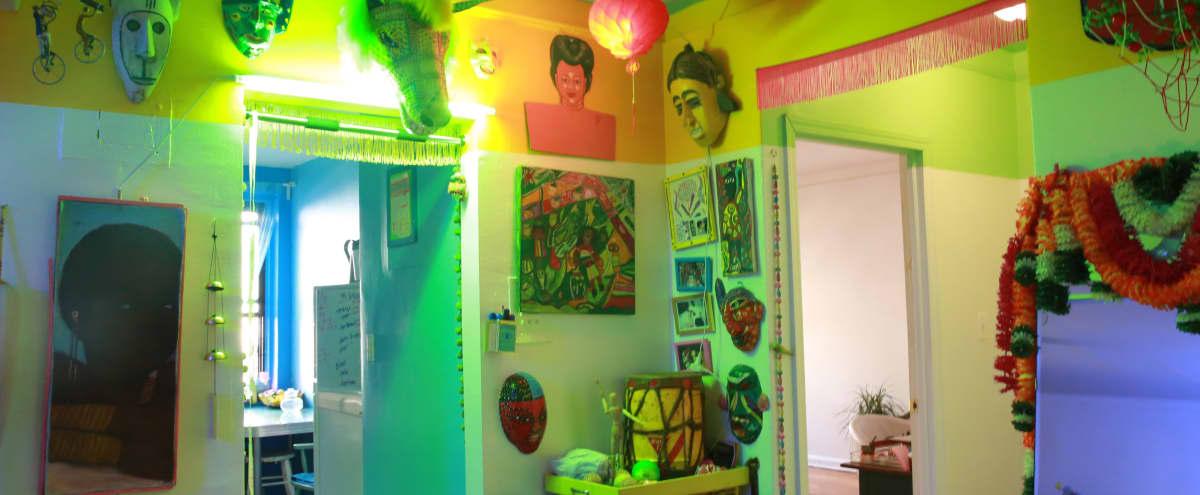 Eclectic Caribbean Inspired Apartment in Flatbush in brooklyn Hero Image in Flatbush - Ditmas Park, brooklyn, NY