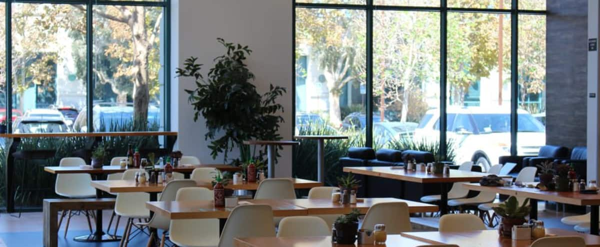 Casual, light filled cafe with outdoor seating and easy parking in Redwood City Hero Image in Redwood Shores, Redwood City, CA