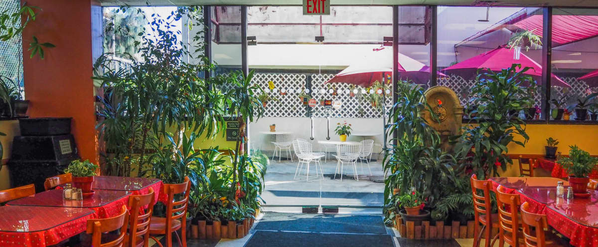 Hidden Restaurant Cafe with Outside Patio in Los Angeles Hero Image in Koreatown, Los Angeles, CA