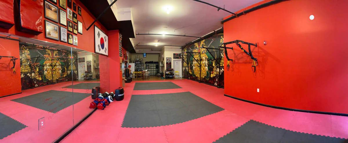 Stunning Open Studio for Photoshoot & Fitness Training in Jersey City Hero Image in The Heights, Jersey City, NJ