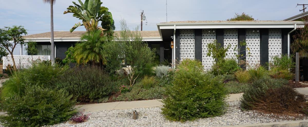 Suburban Midcentury Ranch in Los Angeles Hero Image in undefined, Los Angeles, CA