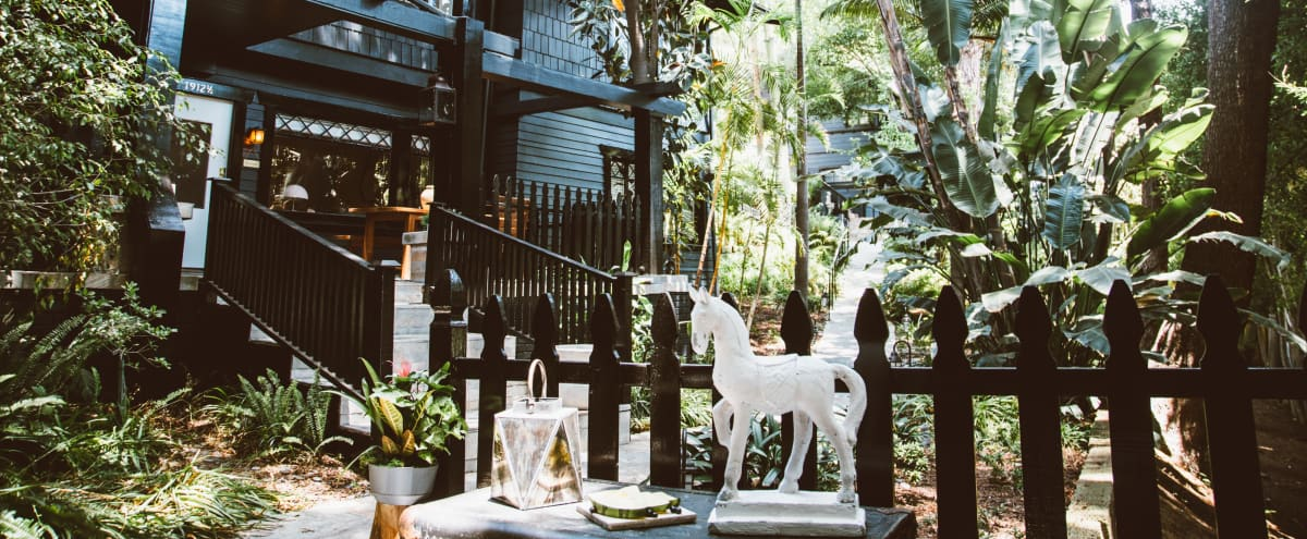 Spacious Boho Victorian bungalow surrounded by lush tropical wild forest garden in LOS ANGELES Hero Image in Hollywood Hills, LOS ANGELES, CA