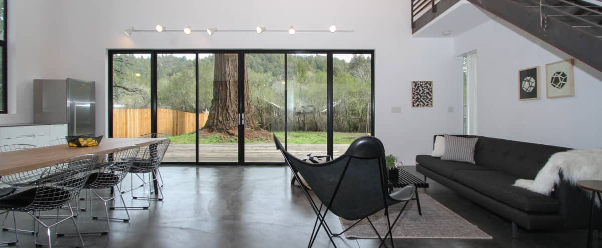 Modern Designer House in Nature in Guerneville Hero Image in undefined, Guerneville, CA