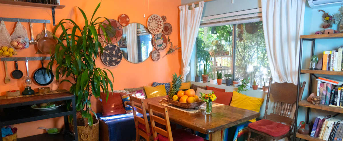 Vibrant Colorful Plant filled Bungalow with Good Vibes in Valley Village Hero Image in Valley Village, Valley Village, CA